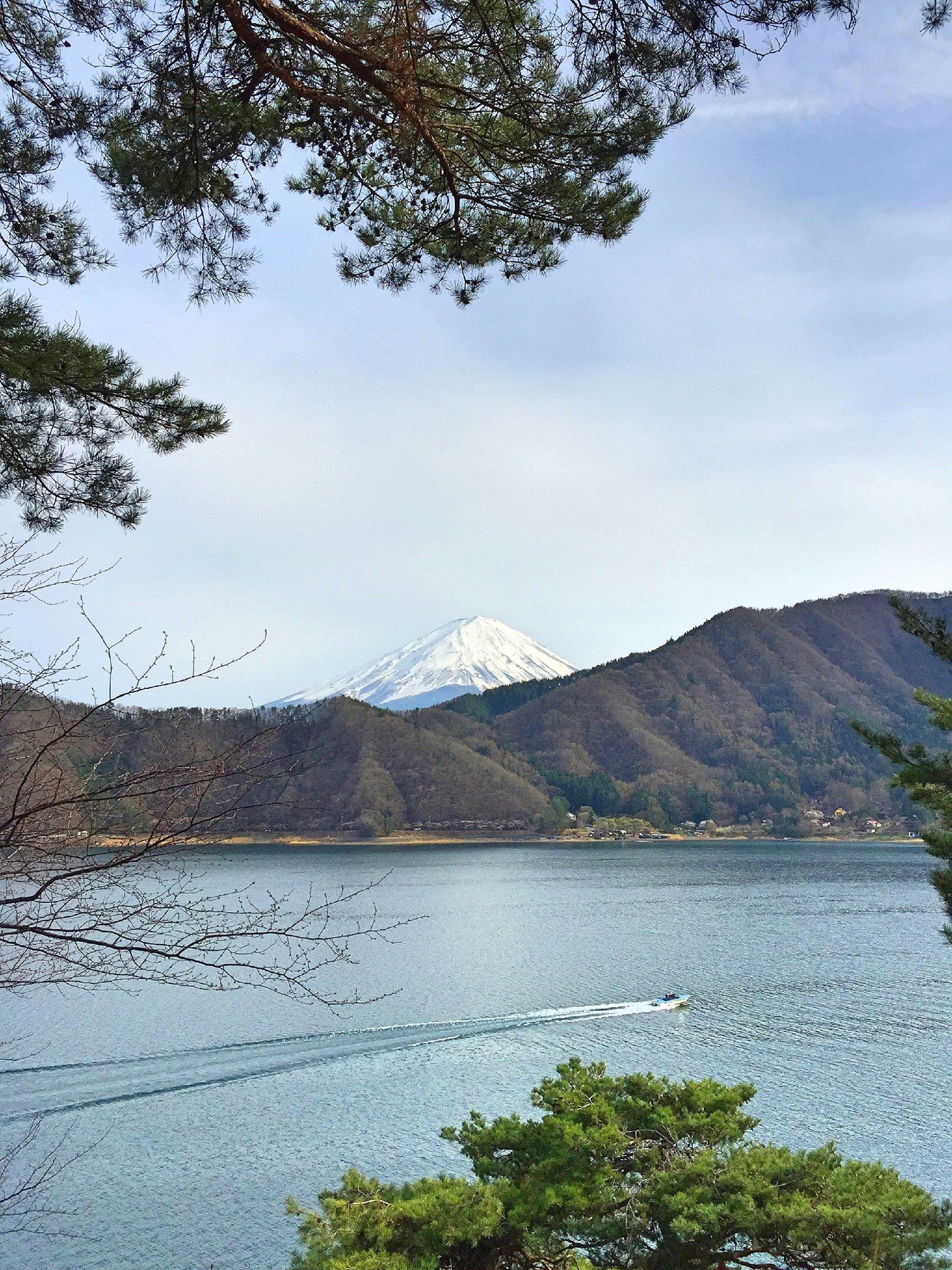 全陽倶楽部裏山から見える富士山